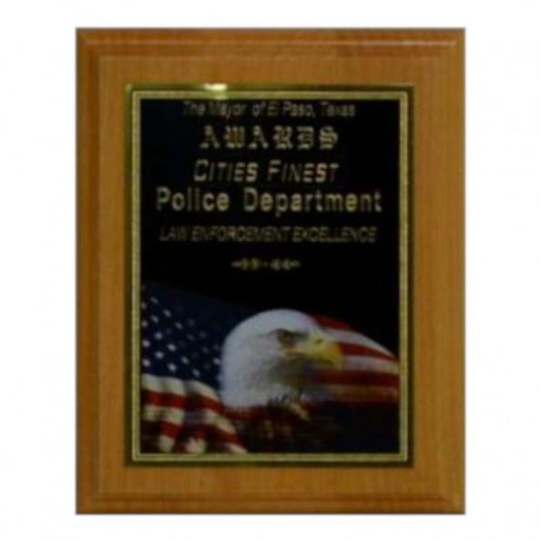 Award Plaque- Cities Finest, Police Department