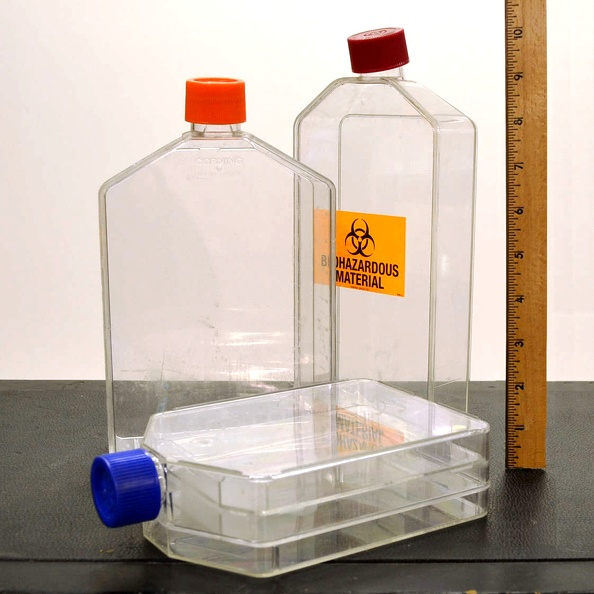 Labware: Flask, Plastic- Culture, Misc Lrg (1 Pc)