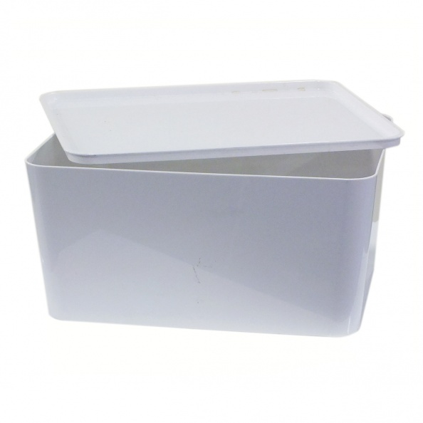 Box, Plastic- White, Large +/- Lid